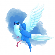 birdmir